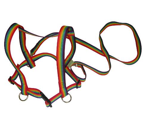 pferdeleine z gelmatz regenbogen zum pferdchen spielen. Black Bedroom Furniture Sets. Home Design Ideas